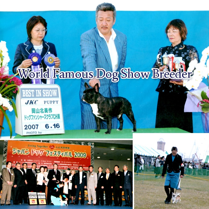 World Famous Show Dog Breeder